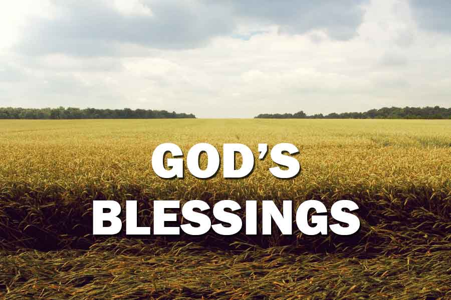 4 Laws Of God S Blessings Joy Digital
