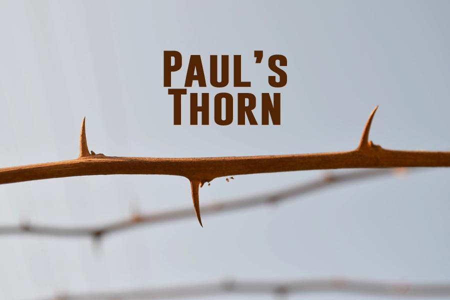 Paul S Thorn Joy Digital