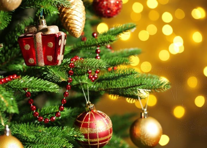 does the bible condemn christmas trees joy digital
