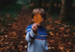 Little Boy Holding Leaf