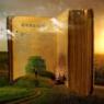Bible book and garden